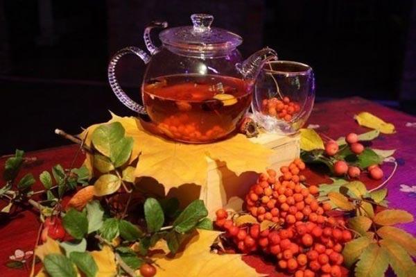 Белый чай – эликсир молодости и здоровья в 2019 году
